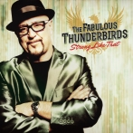the-fabulous-thinderbirds-dont-burn-me-feat-anson-funderburgh